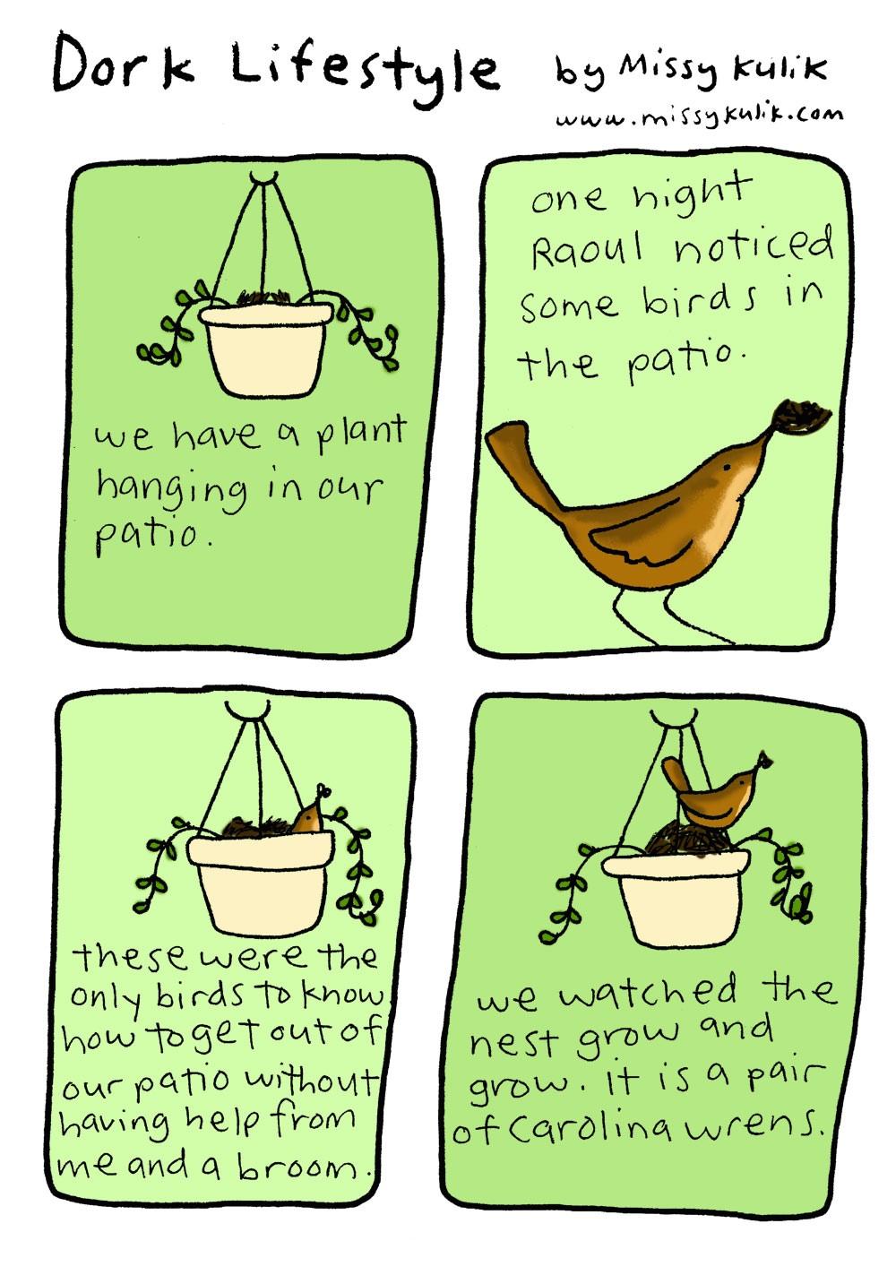 Dork Lifestyle: Hello Birdies!