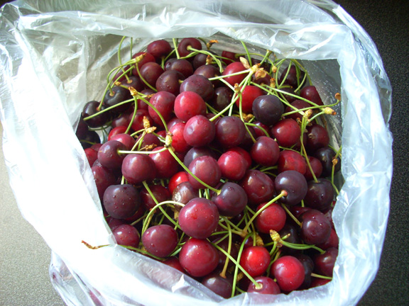 The Secret Life of a Nerd Girl: Life is Just a Bag of Cherries