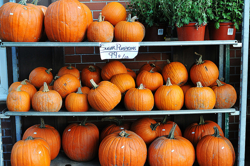 Fierce Foodie: At Least There Are Pumpkins