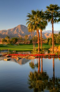 Palm Springs Photo Credit: Talke Photography
