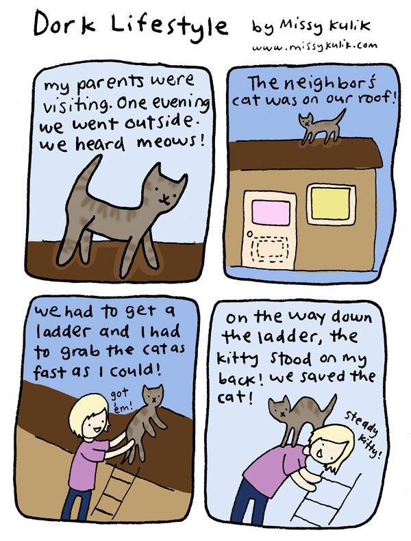 Dork Lifestyle: Poor Kitty, Super Me!