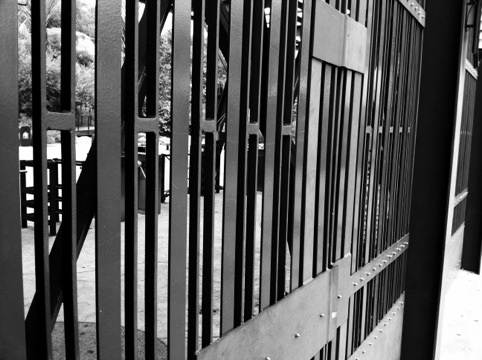 CH's Picture of the Day: Bars [Day 295]