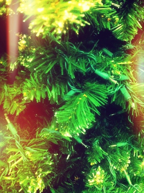 CH's Picture of the Day: Xmas time [Day 336]