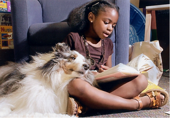 R.E.A.D. DOGS: A RADIO INTERVIEW WITH ROVER: Teaching Children to Read, One Dog at a Time [Bewitched, Bothered, & Bewildered]