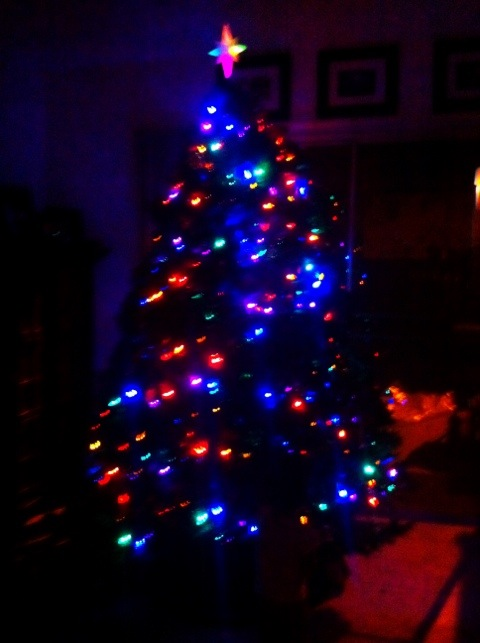 CH's Picture of the Day: Xmas time[Day 339]