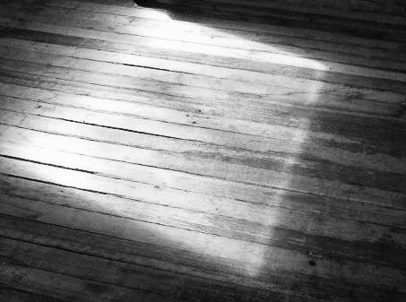 CH's Picture of the Day: Floor [Day 362]
