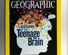 The Teenage Brain [One More Thing Before We Go]