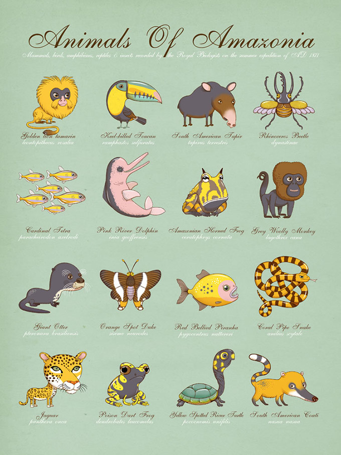 The-Children--s-Guide-To-Natural-History-1
