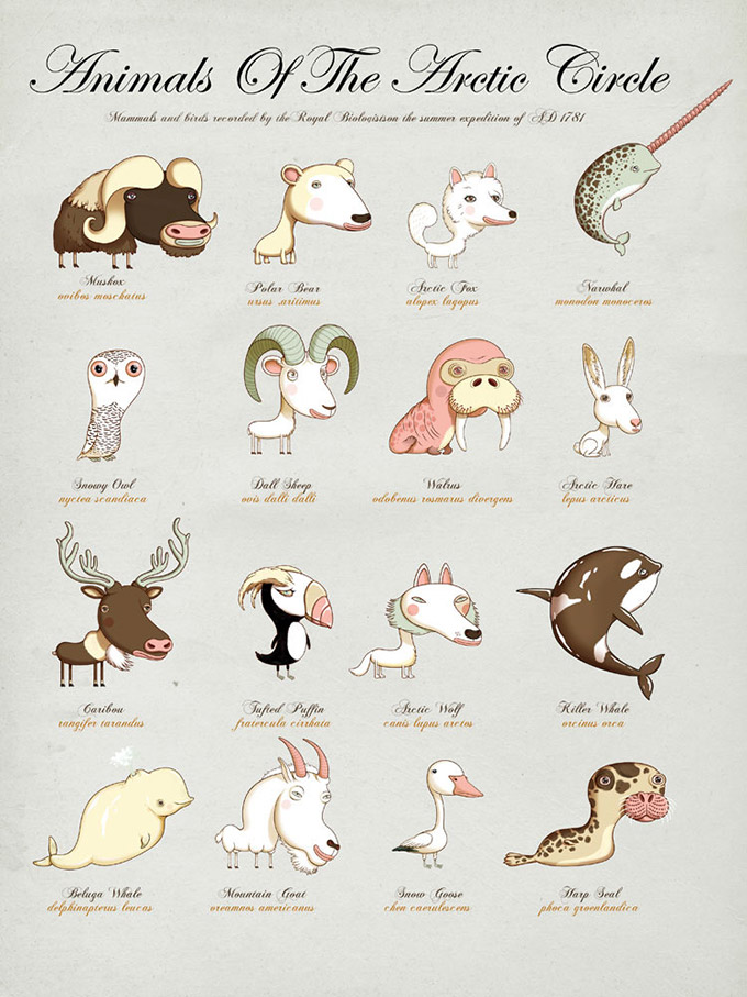 The-Children--s-Guide-To-Natural-History-2