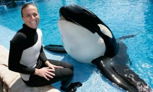 Dawn and Tilikum prior to the vicious attack.